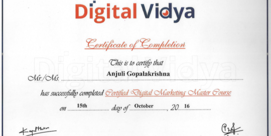 Digital Media Marketing Certification