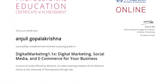 Digital Marketing, Social Media and E com for business Wharton University